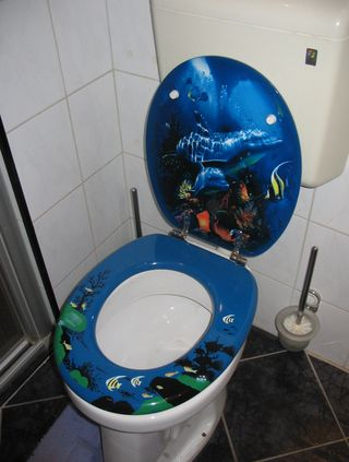 Decorative_toilet_seat